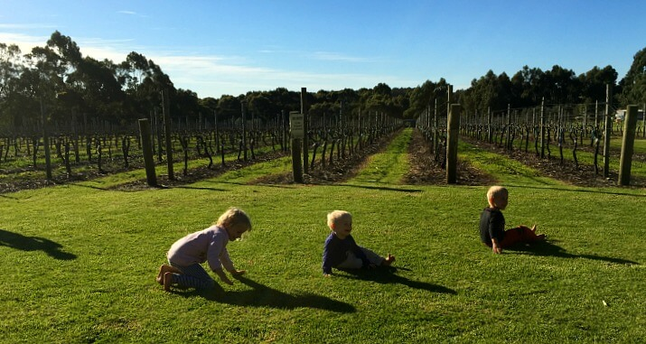 Bootleg brewery near the town of Denmark, Western Australia is a great example of an ultra family-friendly winery in Western Australia