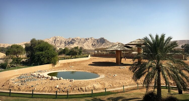 Al Ain Zoo, overlooked by Jebel Hafeet