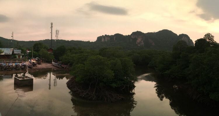 Beautiful evening walks through the mangrove area, north eat koh Phi Phi Don