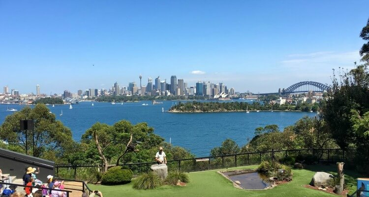 Taronga Zoo Sydney | Best Australian Wildlife Encounters | Our Globetrotters