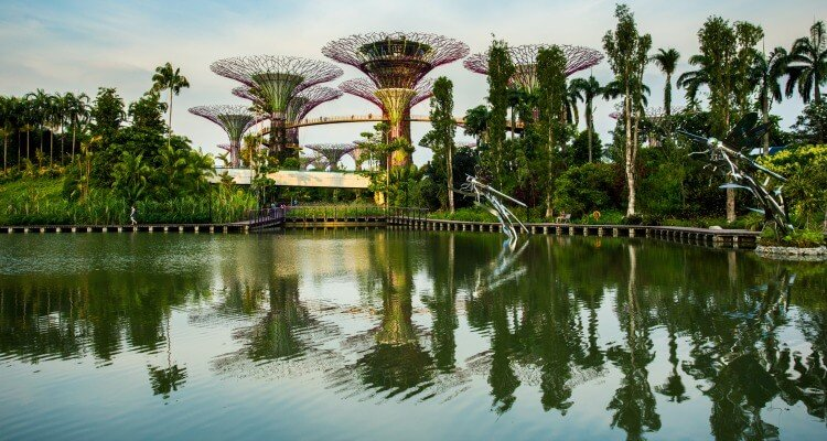 Singapore Garden by the bay at twilight Best family-friendly things to do in Singapore