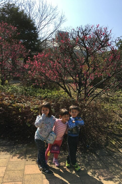 Explore My City Tokyo with Kids - Guest post on Our Globetrotters Family Travel Blog from Wisterian Watertree