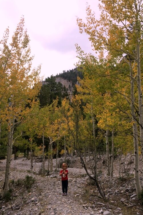 Hiking Mt Charleston in the Fall | Things to do on day trips from Las Vegas