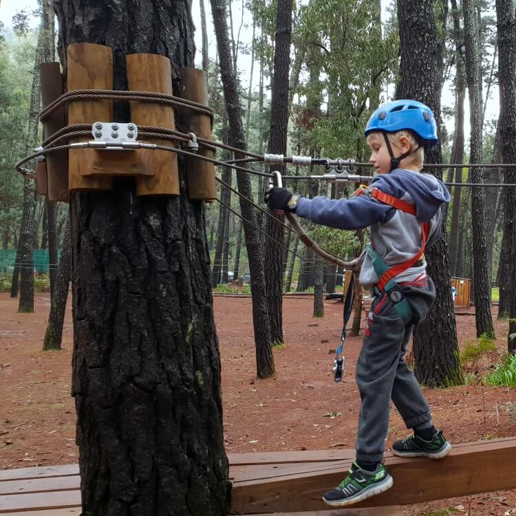 6 year old in action at Trees Adventure Lane Poole Dwellingup