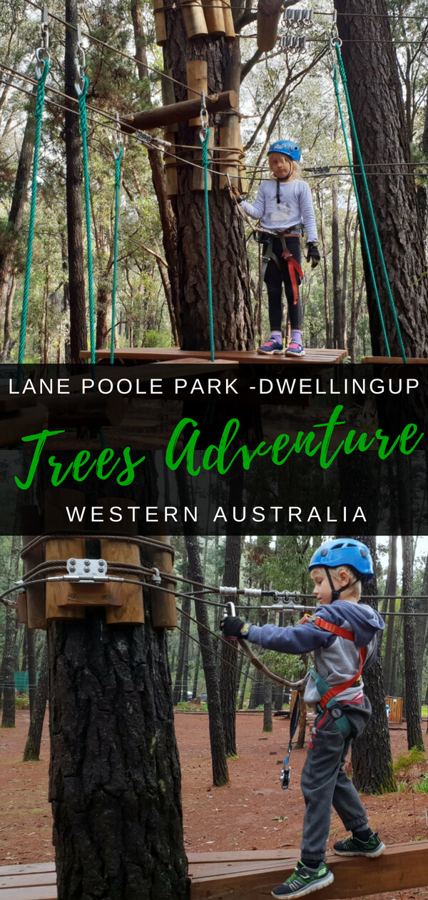 Trees Adevnture Lane Poole Park near Dwellingup, Western Australia | A great outdoor aventure for kids