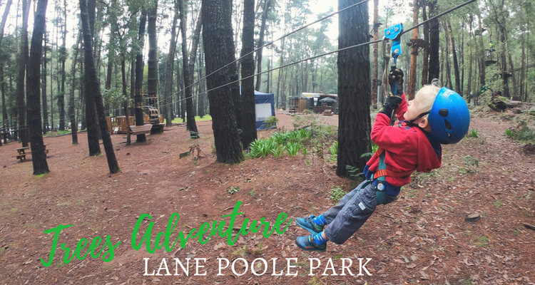 Trees Adventure - Lane Poole Park Dwellingup - an outdoor adevnture with kids