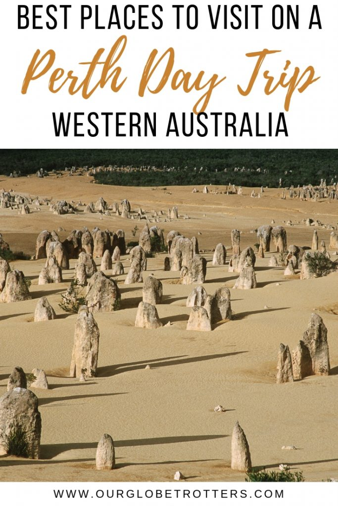 Picture of the Pinnacles - Perth Day Trips