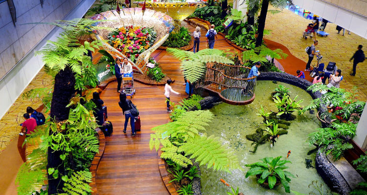 Gardens inside Changi Airport Singapore Airline Review
