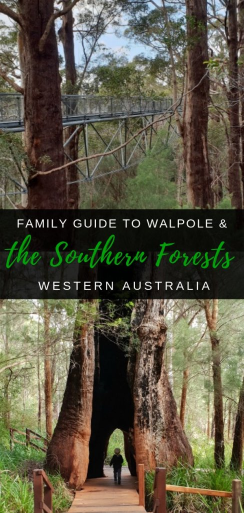 Family Guide to Visiting Walpole & the Southern Forests of Western Australia