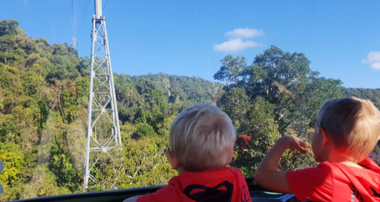 Boys enjoying the Kuranda Skyrail