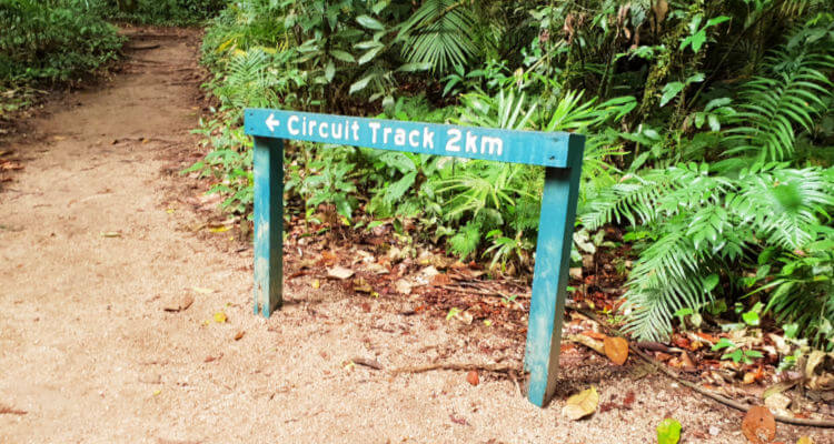 Circuit Track sign post at Mossman Gorge Queensland