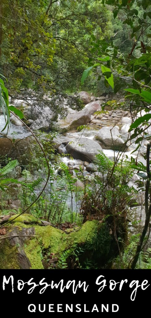 Complete guide on how to plan a day trip to the stunning Mossman Gorge in the Dintree Forest, Queensland Australia