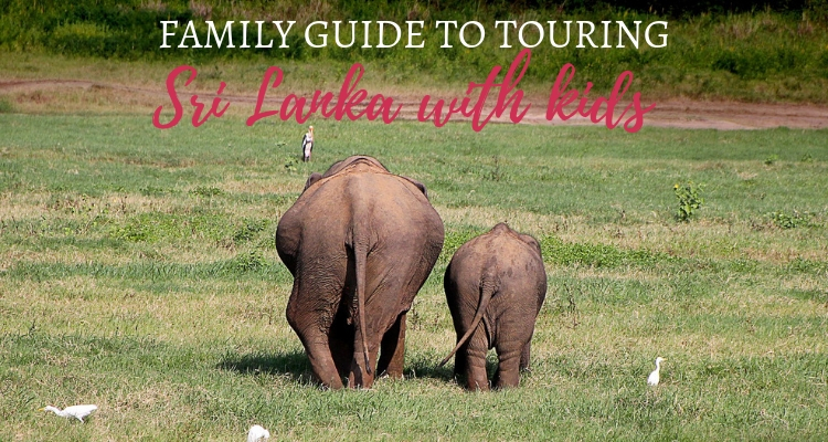 Family Highlights Tour of Sri Lanka