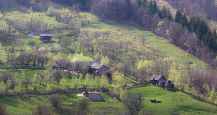 ATTACHMENT DETAILS Transylvania-countryside.jpg April 29, 2019 379 KB 750 by 400 pixels Edit Image Delete Permanently