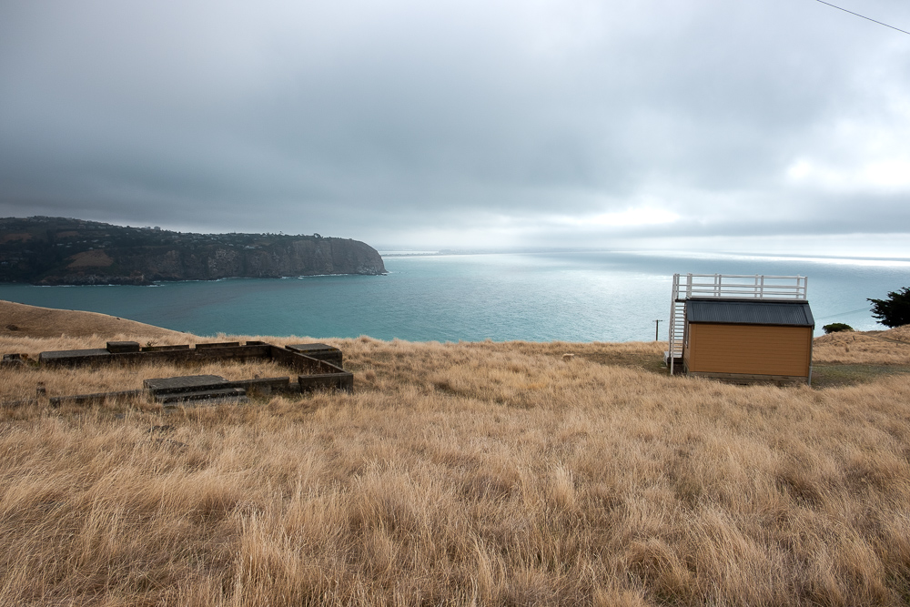 Scotts Cabin on Godley Head Track