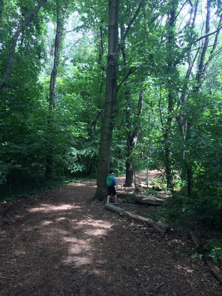 Prospect Park Trail