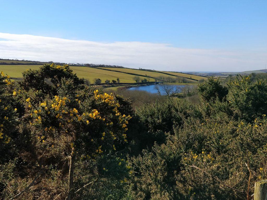clypse reservoir walk