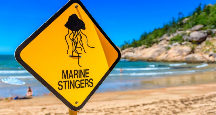 Stingers Sign