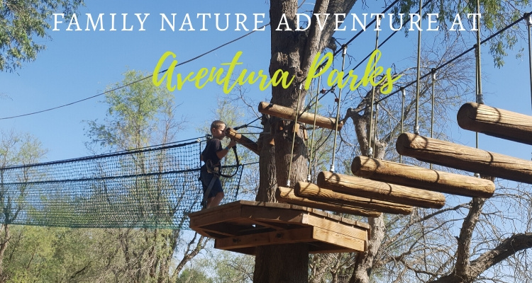 Aventura Parks - Dubai Tree top Adventure experience