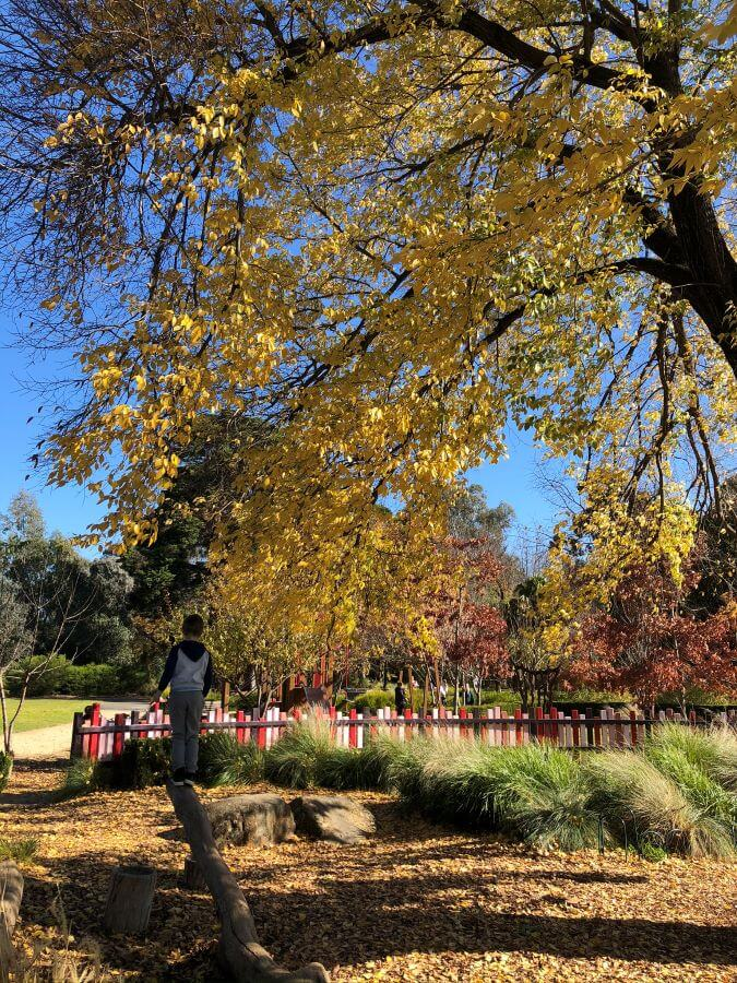 Botanic Gardens White Hills Bendigo