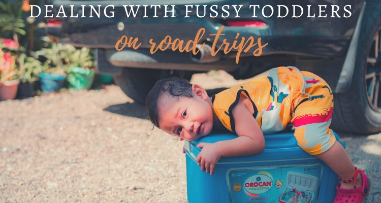 Dealing With Fussy Toddlers During a Road Trip