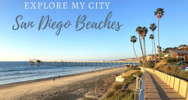 6 Beautiful family-friendly Beaches in San Diego