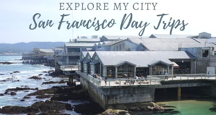 9 Incredible Family Day Trips From San Francisco