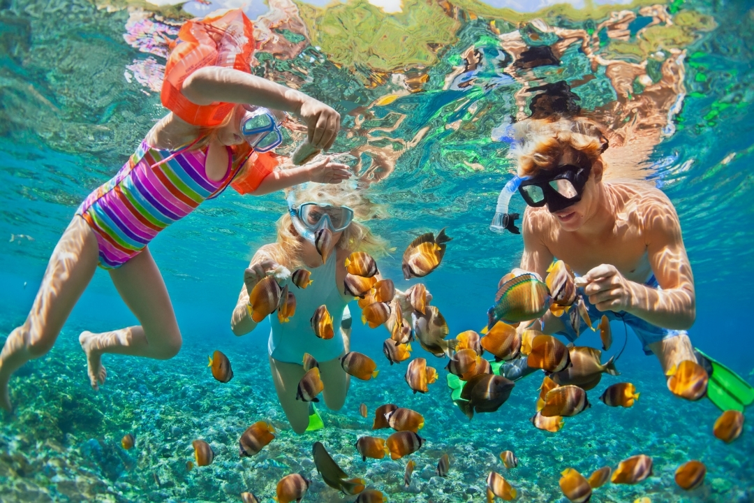 Kids swimming in tropical water with fish