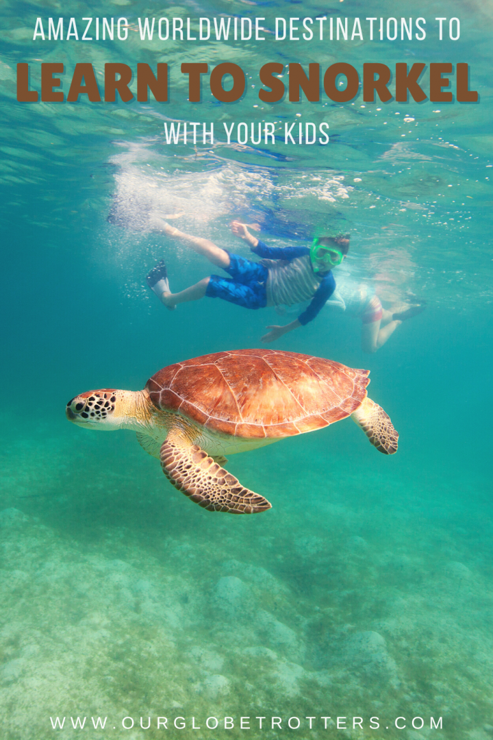a turtle and child in the ocean caption Learn to Snorkel