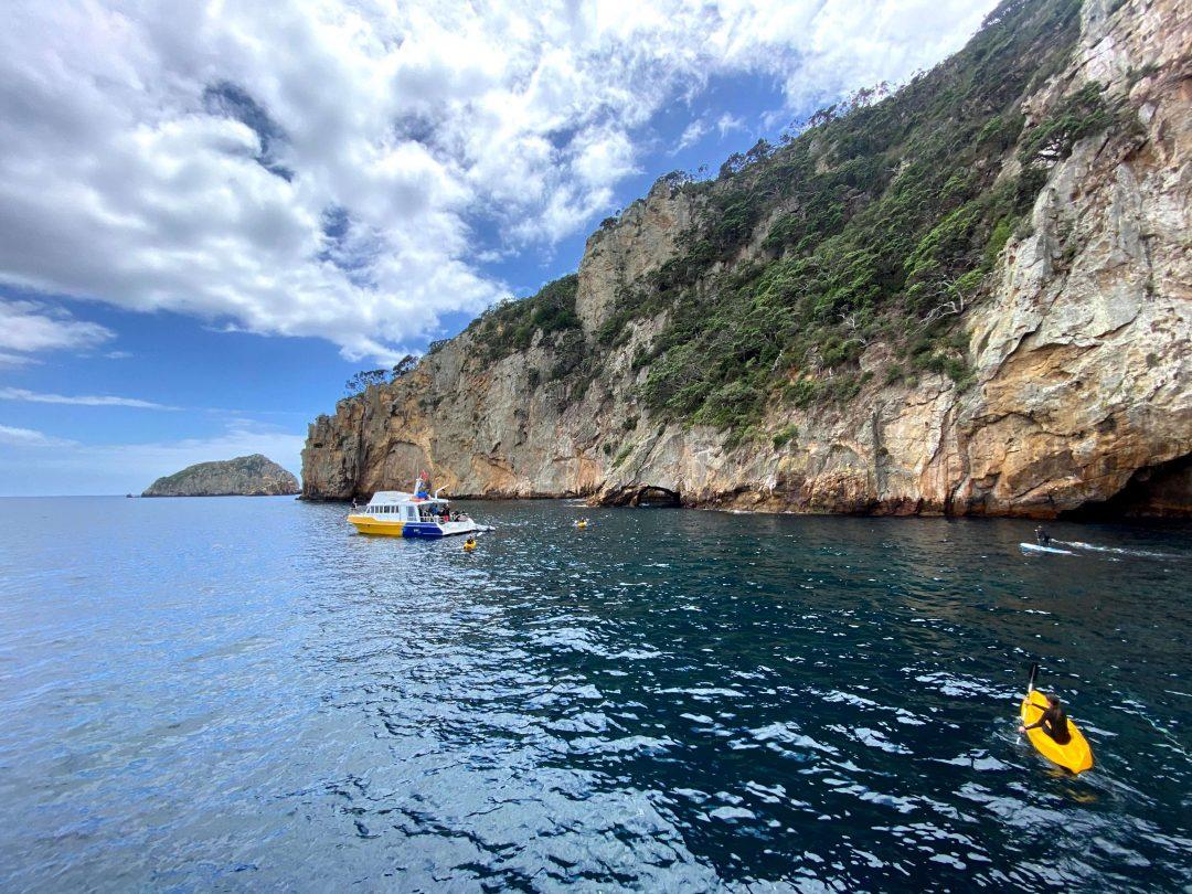 Poor Knights Island New Zealand snorkelling boat trip