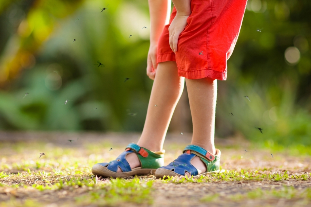 Childs legs been bitten by mosquitos - ad for mosquito repelling patches
