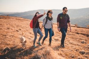 family hiking in teh sunshine with their pet dog