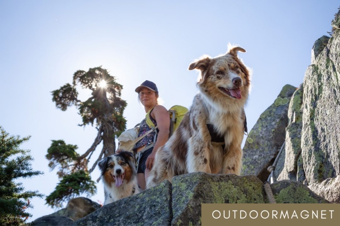 A women hiking with two dogs - outdoor magnet guide dog hiking