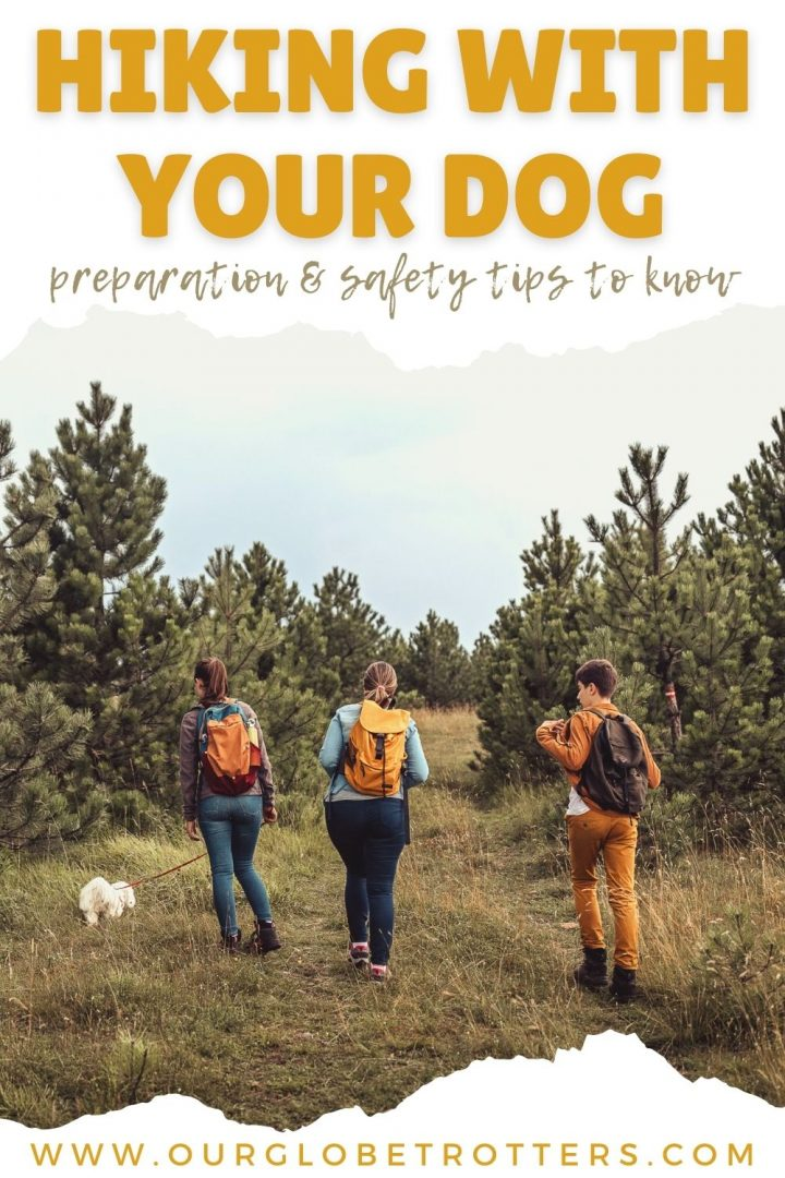 Hiking with your dog - a  family with backpacks walking with their dog