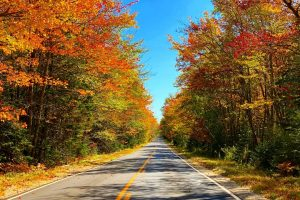 a fall foliage lined road in Maine USA