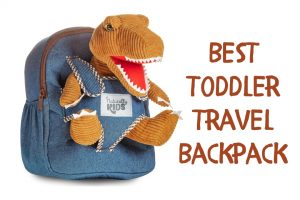 Cute dinosaur backpack